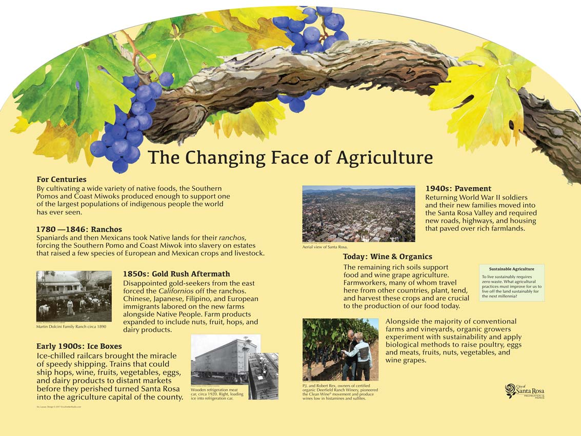 The interpretive panel describes the history of agriculture in and around Santa Rosa, California, from ancient times to the present. This educational panel was completed with the help of Gayle LeBaron, Santa Rosa, California historian, and Buffy McQuillen, Tribal Heritage Preservation Officer, Graton Rancheria, CA. Historical and contemporary photographers, including Herb Lingl, contributed to the content.