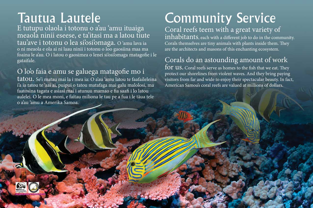 An interpretive display at Pago Pago, American Samoa, showing pastel paintings of Moorish idol, yellow tang, and other species of tropical fish.