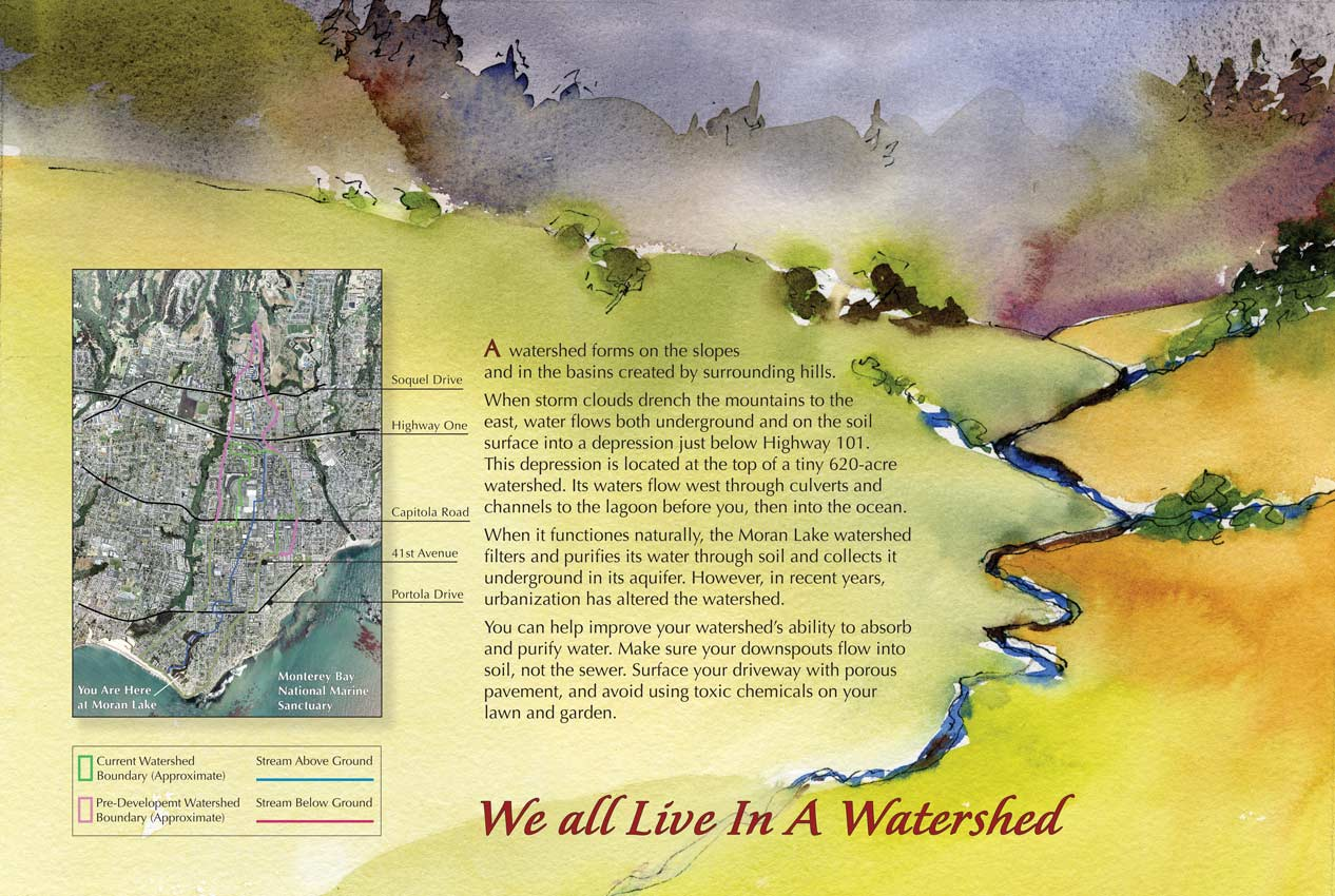 This trailside panel shows a watercolor painting and map of the watershed that empties into Mora Lake, Santa Cruz, California. It gives tips on how citizens can help improve a watershed's ability to absorb and purify water their drinking water.