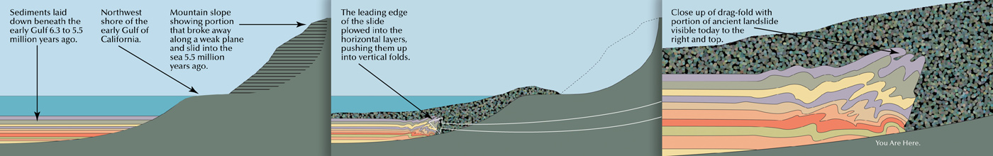 This geology illustration, commissioned by Acorn Group and Anza Borrego Desert State Park, is part of an interpretive display that speaks about Geology on View in the park.