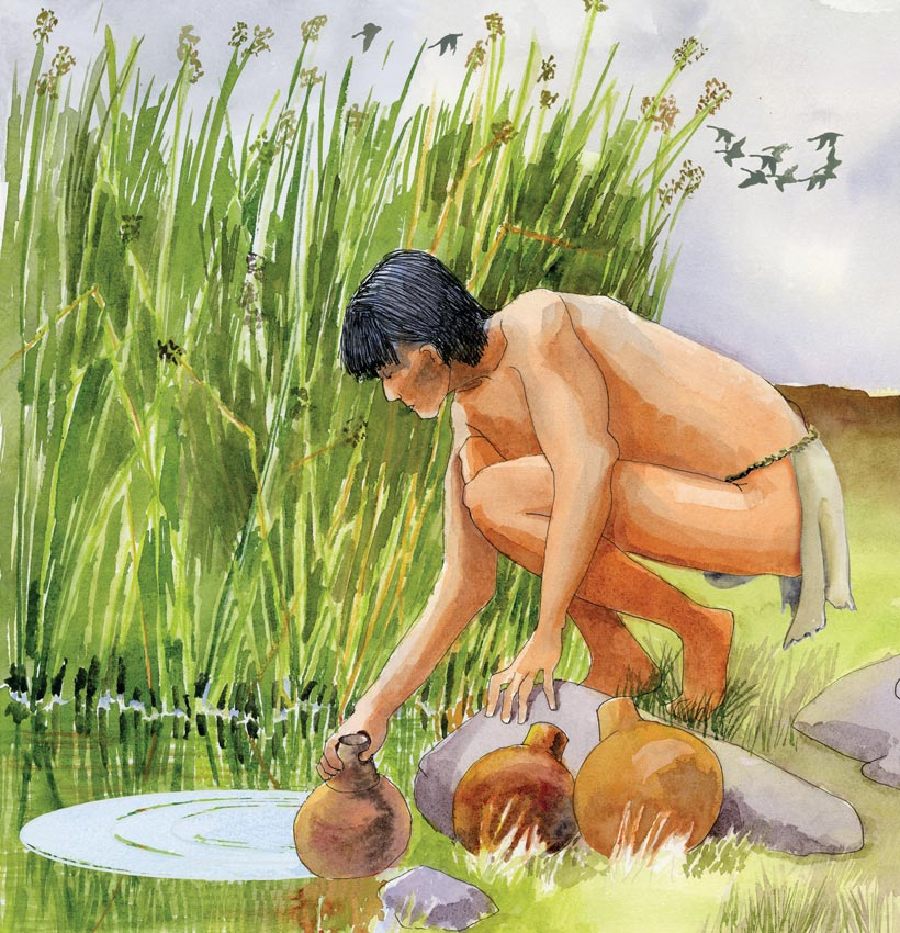 A watercolor illustration of a Native American man collecting water in an olla at an oasis. The illustration was created for Acorn Group interpretive panels for the Anza Borrego Desert State Park.