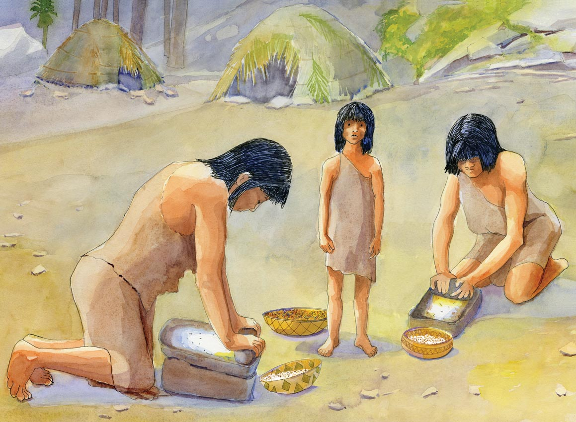 Watercolor illustration of Cahuilla women grinding corn using a metate and grinding stone. This image was created for an interpretive panel made by Acorn Group for Anza Borrego Desert State Park.