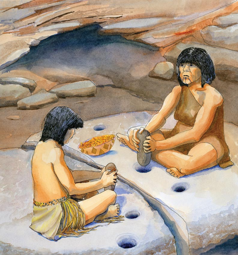Kumeyaay woman and daughter grinding seeds using a stone pestle at a mortero, or grinding rock. The illustration was created for an Acorn Group trailside display designed for the Anza Borrego Desert State Park.